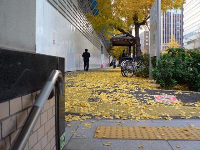 霞ヶ関駅枯葉3.jpg